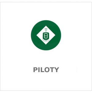 Piloty