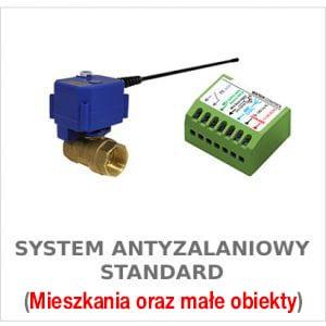 System Antyzalaniowy Standard